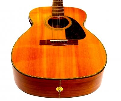 Palos Park Guitar Lessons